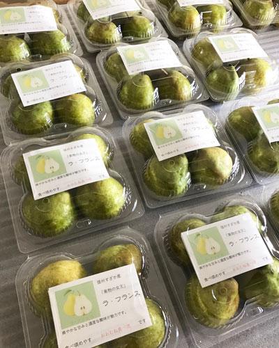 【農園便り】ラ・フランスの販売が始まりました!